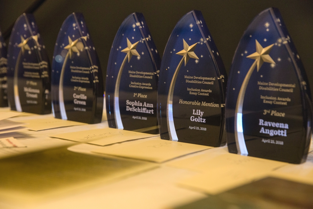 Line of trophies from the 2018 Inclusion Awards Ceremony